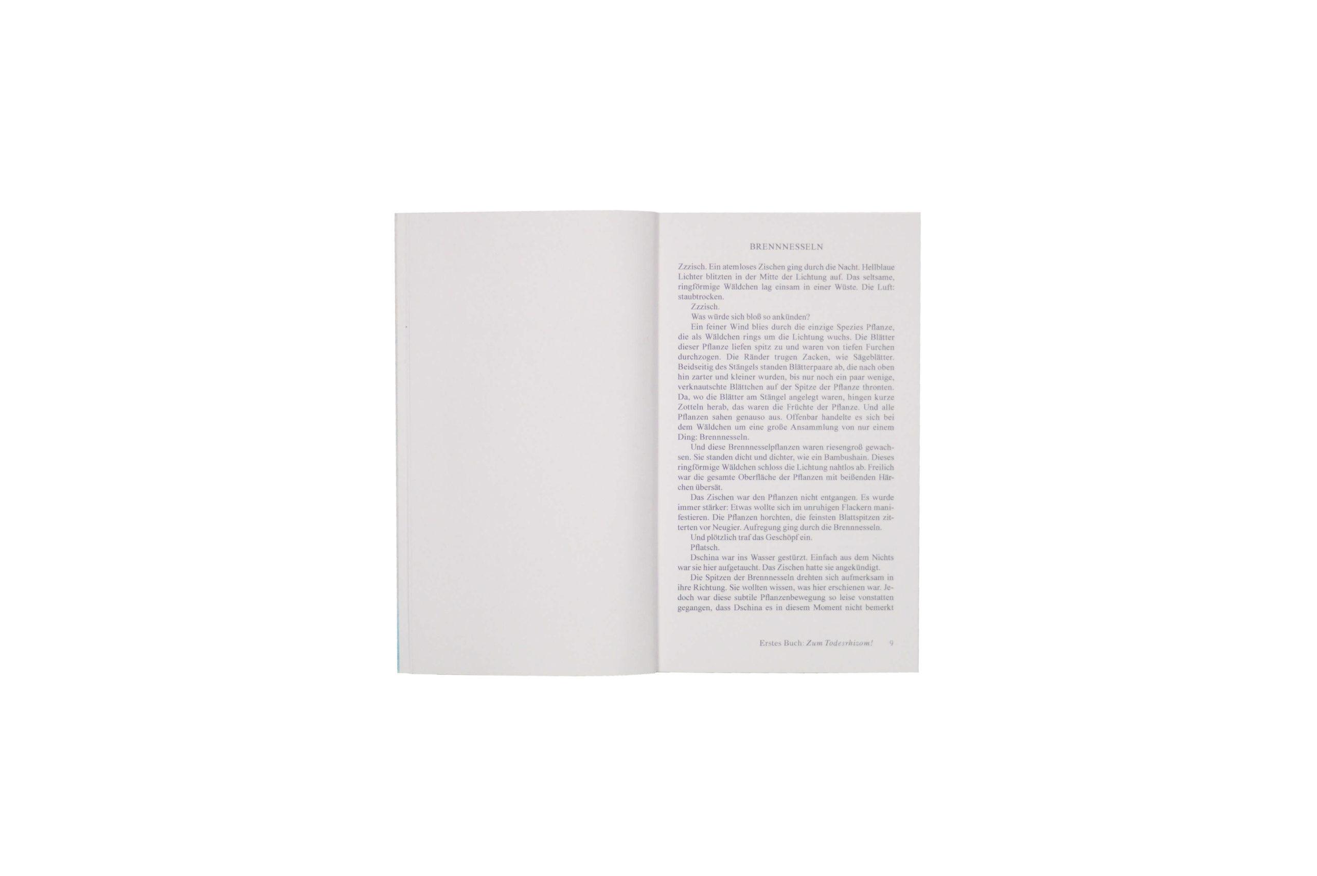 Product image of Gina, ein zuständiger Roman